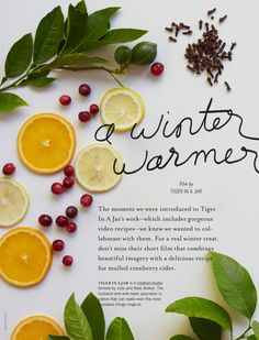 Mulled Cranberry Cider by Tiger In A Jar. Even the words magical & wonderful are not enough to describe what I think of Tiger In A Jar videos. I so love their work. So much.