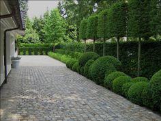 Side of house Patio Trees, Backyard Patio, Driveway Landscaping, Modern Landscaping, Villa, Garden Paving, Garden Paths, London Garden, Casa Real