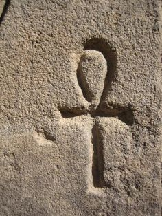 The ankh is an ancient Egyptian symbol of life. Also known as an Ansata (latin; handle) cross, it is a visual representation of a sandal strap. The horizontal and vertical bars of the lower tau cross represent the feminine and masculine energy, respectively. This combination of male and female symbols (the cross and circle) in the ankh suggest fertility and creative power. The top loop also symbolizes the sun on the horizon, and suggests reincarnation and rebirth.