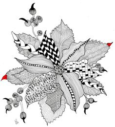 One Poinsettia Black and White
