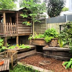 small fish ponds in yards | Family-friendly Urban Aquaponics « Milkwood: permaculture farming and ...