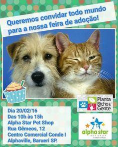 """BONDE DA BARDOT: SP: ONG """"Planta, bicho e gente"""" faz campanha de adoção em Barueri, neste sábado (20/02)"""
