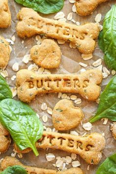 Spinach, Carrot and Zucchini Dog Treats | Healthy Homemade Pet Food Recipes And Treats