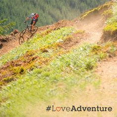 Exercising indoors? Not this year. Trade your gym membership for the outdoors and reap the rewards that comes with the great wide open!  Mountain bike the Quantocks, run the Durdle Door or take a dip in Cauldron Falls. You might even learn to love it! #LoveAdventure