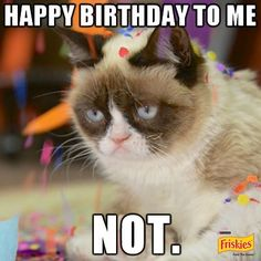 1931e95ad91ee17d26a3e9c7528627f8 cat memes funny memes i missed grumpy cat on gma today, and i was home! animals