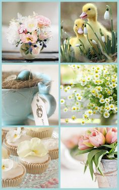 Cowparsley the blog : In the mood for Spring