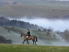 thecountrysquire:Boxing Day Hunt 2013 at Bakewell, Derbyshire