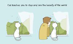 Les avantages d'avoir un chat en 10 illustrations délirantes !