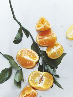(via on orange trees and citrus cake / Herriott Grace)