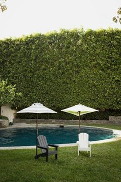 Green Room - Molly Sims's Classic Colonial Home in Beverly Hills - Photos