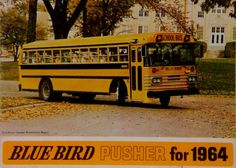 The 1964 Blue Bird All American Pusher Type C School Bus School Buses, Blue Bird, Trucks, Type, Cars, Yellow, American, Illustration, Vintage