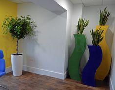 Indoor Office Plants, West Midlands, Curvy, Display, Eye, Floor Space, Billboard