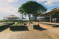 The Farm – Stehnbuild