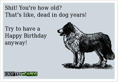 Sarcastic Birthday Cards