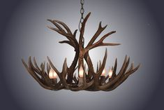 Shop the Mule/Deer Antler Unique / Statement Wagon Wheel Chandelier at Perigold, home to the design world's best furnishings for every style and space. Plus, enjoy free delivery on most items. Deer Antler Chandelier, Antler Wreath, Antler Lights, Antler Art, Antler Crafts, Shed Antlers, Wagon Wheel Chandelier, Mule Deer, Contemporary Chandelier