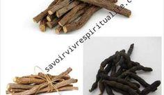 Cinnamon Sticks, Spices, Joelle, Health, Woman, African, Fertility Yoga, Health Remedies, Digital Marketing