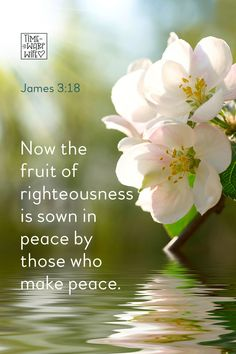 James 3:18 - #christianity #christian #bible #faith #jesuschrist #God #love #christianencouragement #truth #biblestudy