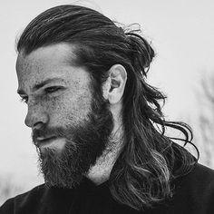 Mann Pferdeschwanz + lange Haare + Vollbart