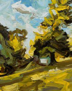 blackheath nsw landscape