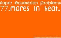 Super Equestrian Problems : 1 of 7