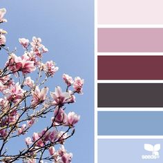 SnapWidget | today's inspiration image for { blossoming hues } is by the wonderfully talented @georgiestclair ... thank you Georgie for generously sharing your work in #SeedsColor , this palette was *such* a pleasure to create!