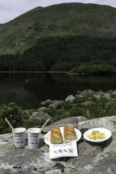 We found a great spot for a picnic in the Black Valley in County Kerry. Time to get out the eco-friendly party supplies. Picnic Spot, The Great Outdoors, Feel Good, Party Supplies, Eco Friendly, Scenery, Outdoor Spaces, Day, Ireland