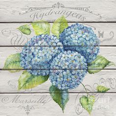 Check out this new painting that I uploaded to fineartamerica.com! http://fineartamerica.com/featured/blue-hydrangeas-jp3921-jean-plout.html