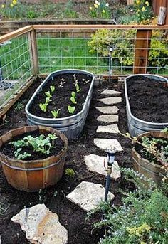 Recycle different tubs as garden planters