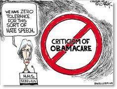 political cartoons socialism - Google Search
