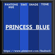PANTONE SEASONAL COLOR SWATCH PRINCESS BLUE