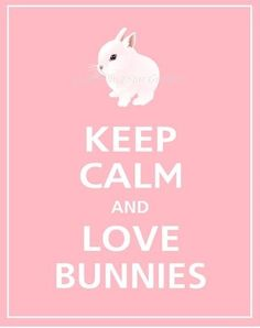 Keep Calm and LOVE BUNNIES Funny Rabbit, Funny Bunnies, Baby Bunnies, Cute Bunny, Rabbit Art, Pet Rabbit, Hamsters, Lana Banana, Bunny Quotes
