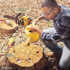 Remove a Tree Stump - You can remove a stump by renting a power stump grinder…