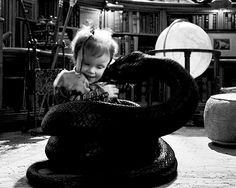 "little girl playing with very large black snake<<<excuse you that is not just a ""little girl"" that is Sunny Baudelaire, younger sister of Klaus and Violet Baudelaire, professional biter."