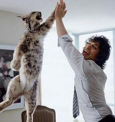 Andy Samberg, how cute is he!