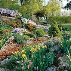My secret garden western colorado on pinterest colorado xeriscaping and colorado springs for Secret garden colorado springs