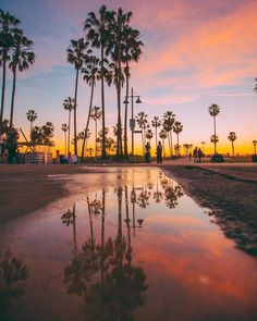 Venice Beach California by Debodoes   CaliforniaFeelings.com #california #cali #LA #CA #SF