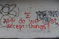 por qué simplemente aceptar las cosas?