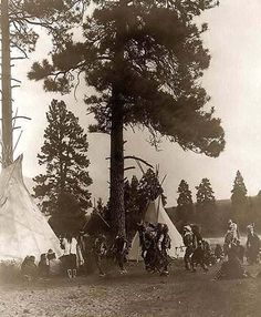 It was taken in 1910 by Edward S. Curtis.    The image shows Flathead men dance in front of tepees under pine trees, river in background.    We have created this collection of images primarily to serve as an easy to access educational tool. Contact curator@old-picture.com. such a beautiful culture