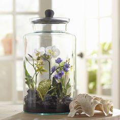 74 Best Terrarium Images Miniature Gardens Succulents Fairy
