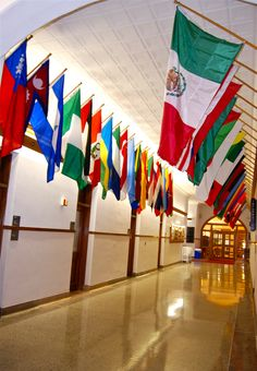 The Hall of Flags International Flags, International Festival, School Fun, Sunday School, American Conference, School Murals, Community Building, Flags Of The World, Flag Decor