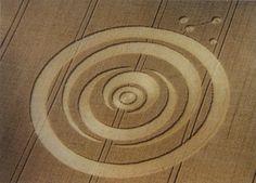 1995.07 'Nested Crescents' (d=52m), East Meon, Hampshire, blé [3]