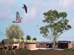 Flying Spur by WOWOWA  Rammed Earth glamping pods on a farm and an indoor swimming pool Australian style