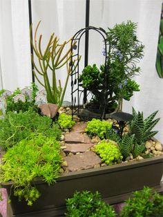 Miniture Garden - cute idea