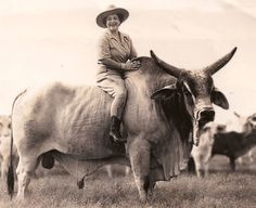 Hawaii's First Lady of Ranching was a real cowboy