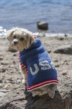 Die 185 Besten Bilder Von Hundemäntel Und Mützen Dog Sweaters