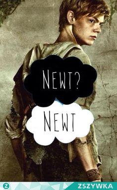 więzień labiryntu newt - Szukaj w Google