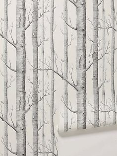 10 Excellent Sources for Buying Birch Tree Wallpaper   Apartment Therapy