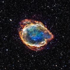 The supernova remnant called G299 is reminiscent of a beautiful flower here on Earth. Image Credit: NASA/CXC/U.Texas