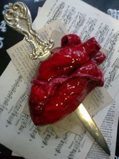 anatomical heart pap