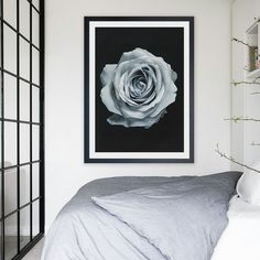Featuring an isolated rose set against a dramatic black background,this art print was originally hand painted by our in-house artist team, and now available as a reproduction giclée art print (archival using pigment inks), unframed or framed. Size & frame colour options available. We ship worldwide. #ThePrintEmporium #botanical #floral #art #print #rose #wallart #floralart #moody #blue www.theprintemporium.com.au